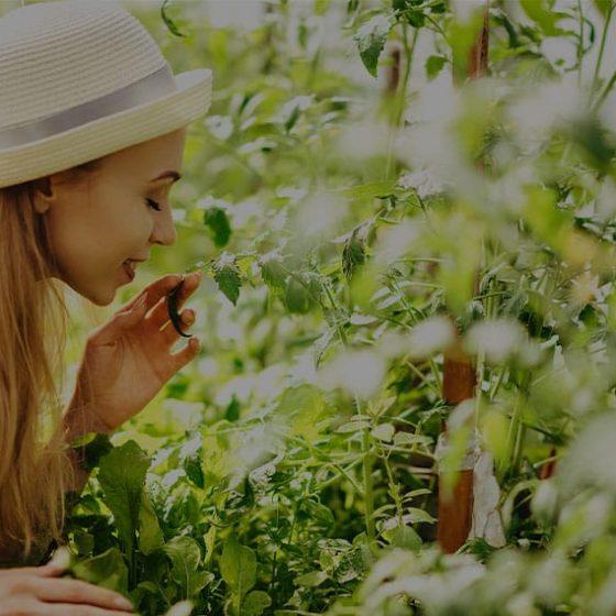 Woman enjoying the aroma of fresh herbs outside