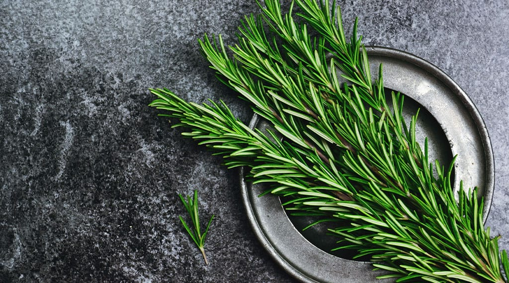 Fresh Thyme on a plate