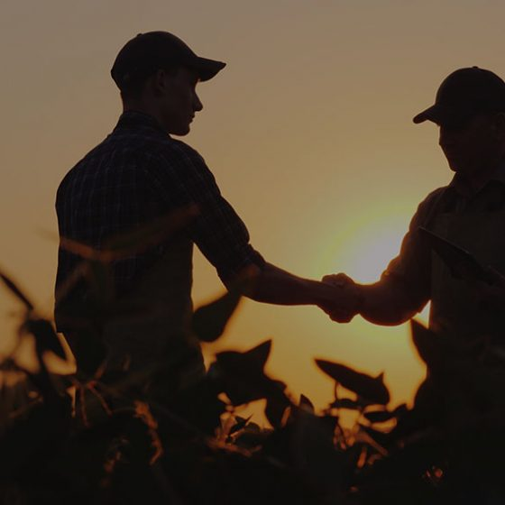 silhouette of men shaking hands in a field